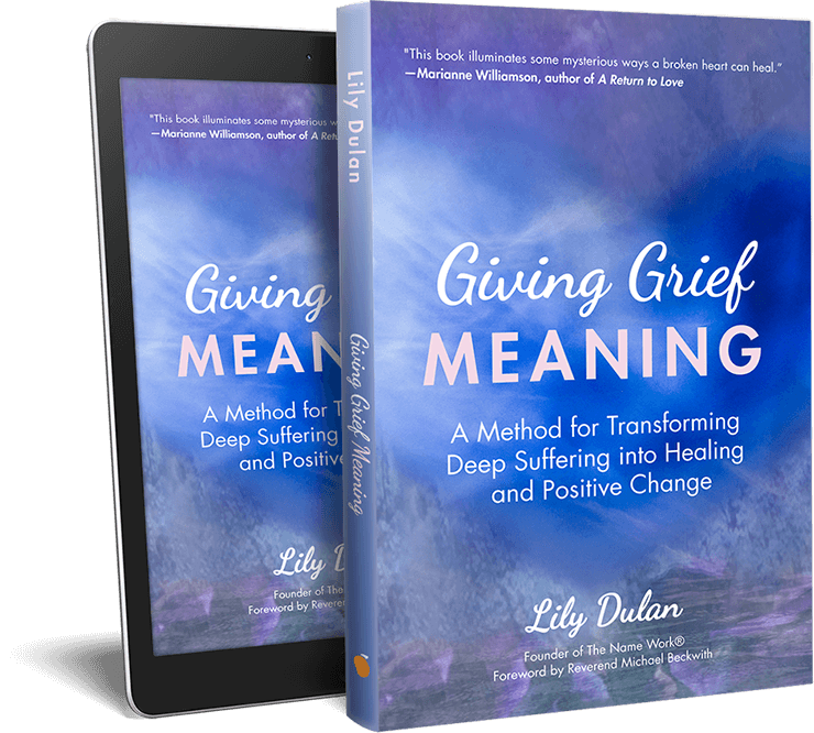 Giving Grief Meaning by Lily Dulan